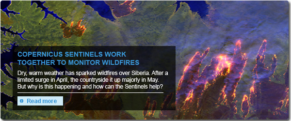 Sentinels monitor wildfires